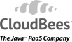 Cloud Bees