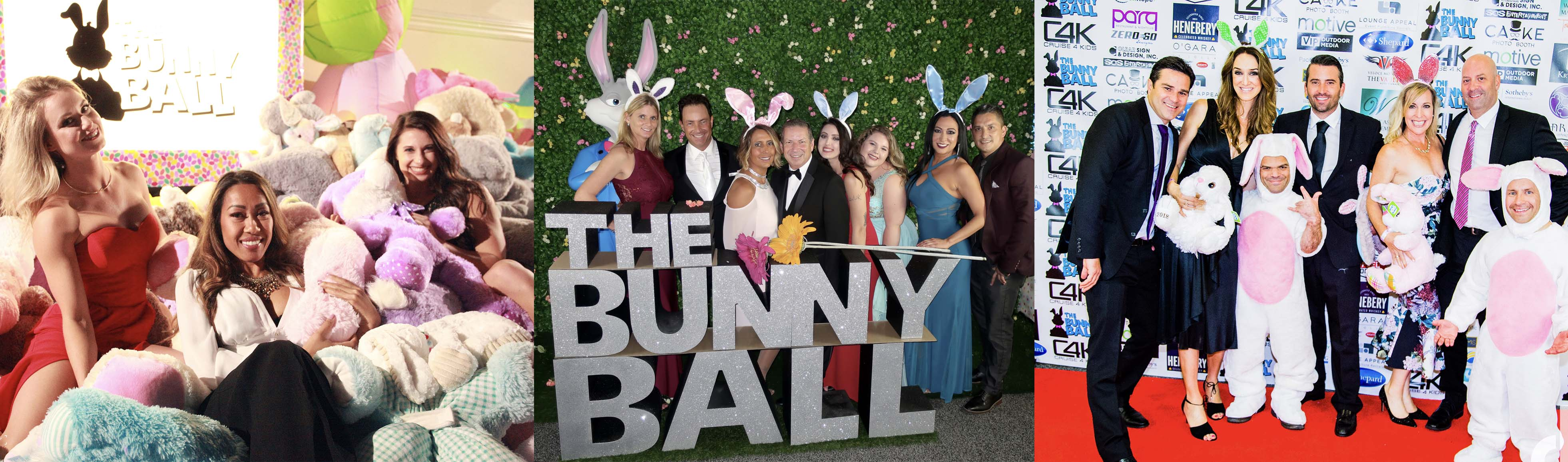 Bunny Ball Images Banner