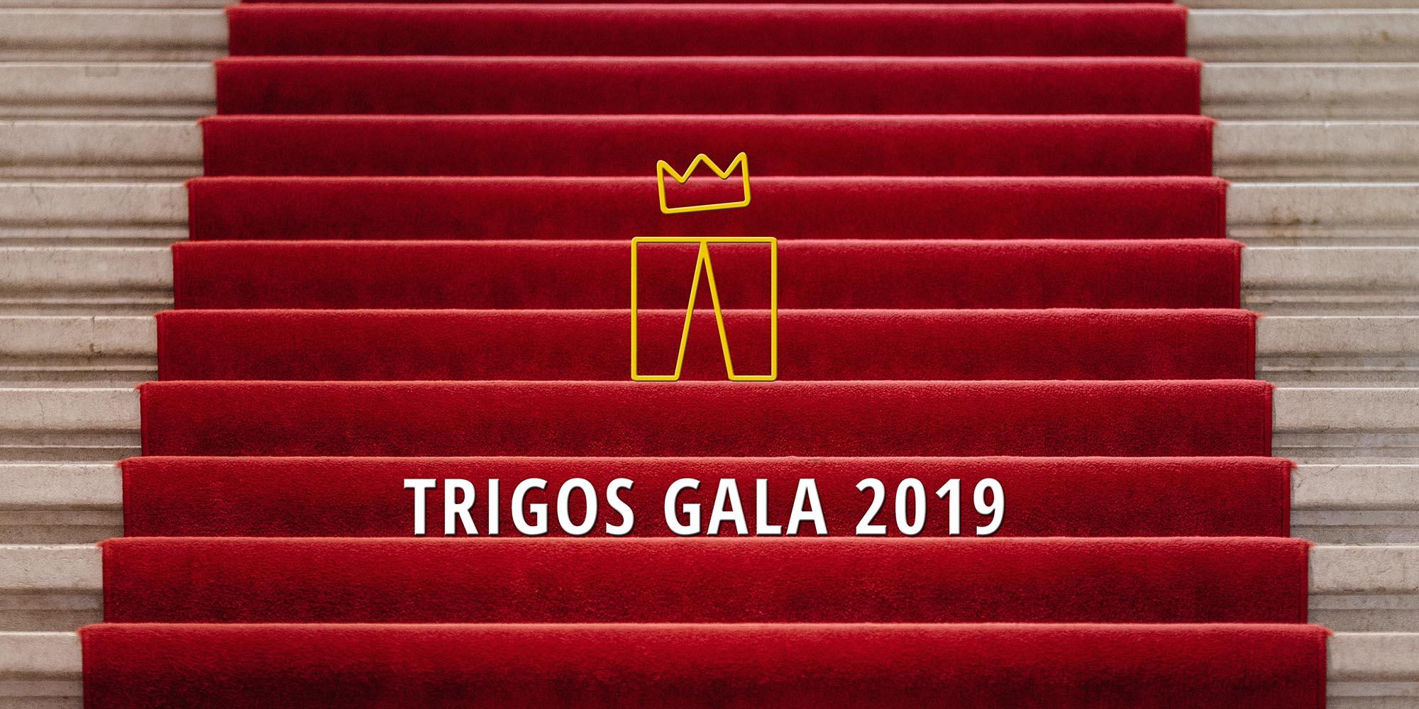 TRIGOS Treppen 2019