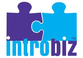 Introbiz Networking events - Secret Millionaire VIP Event