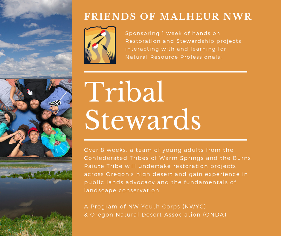 Tribal Stewards 2019