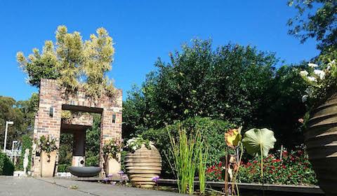 Eden Gardens outdoors