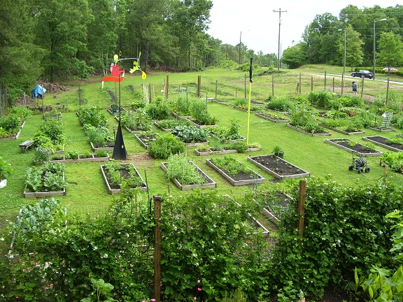 Briggs Avenue Community Garden photo
