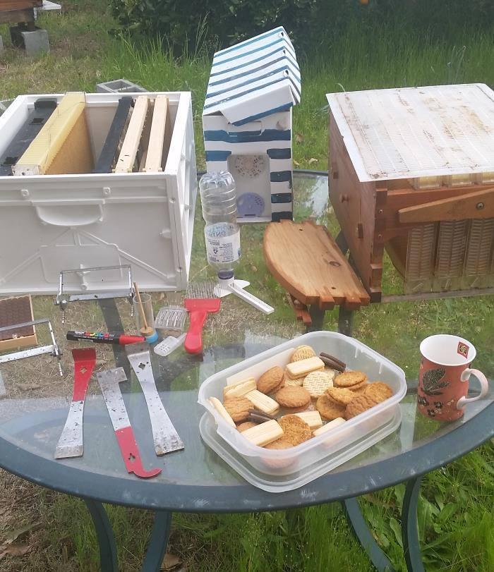beekeeping class