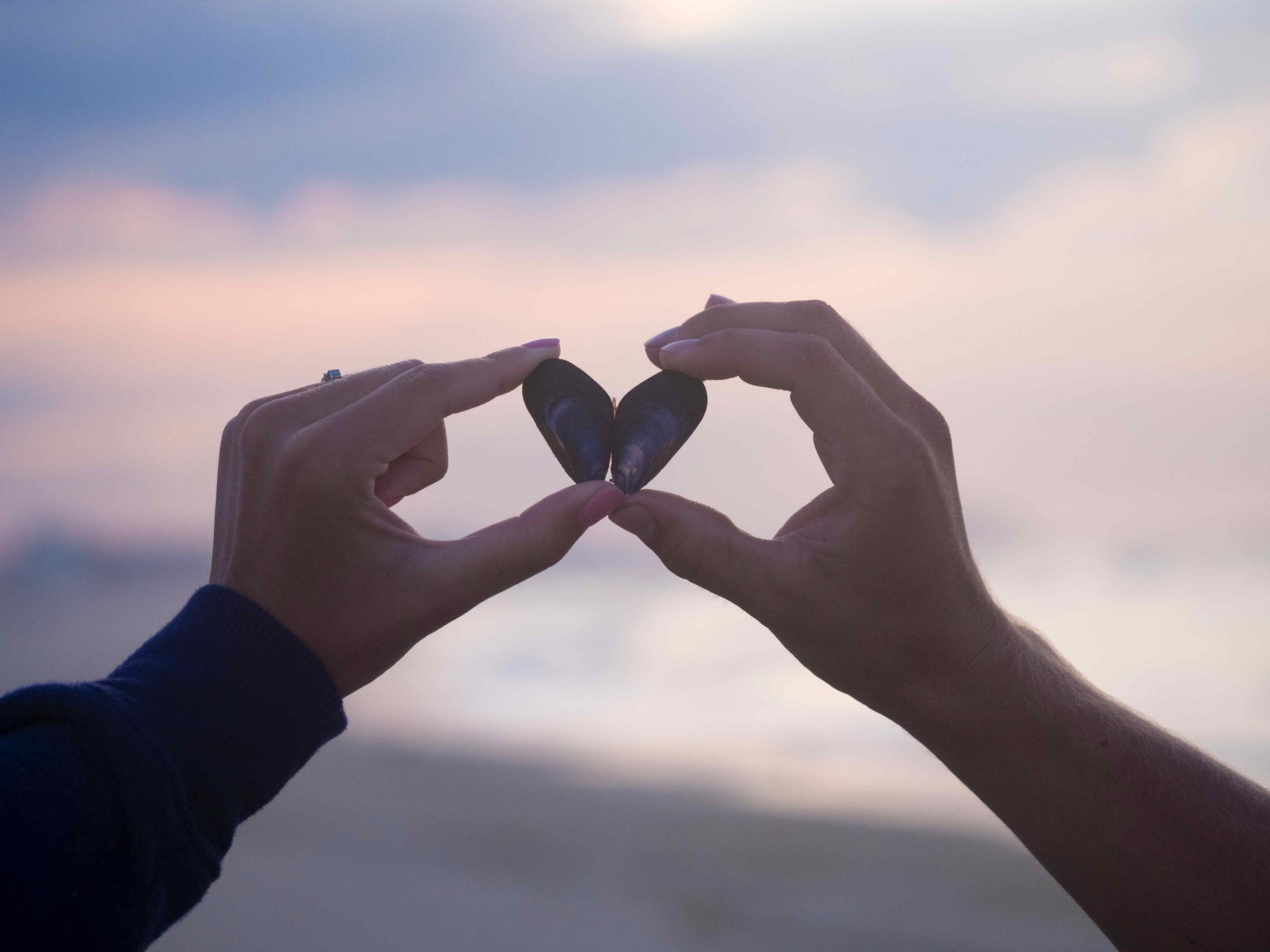 Two hands making a heart with a shell