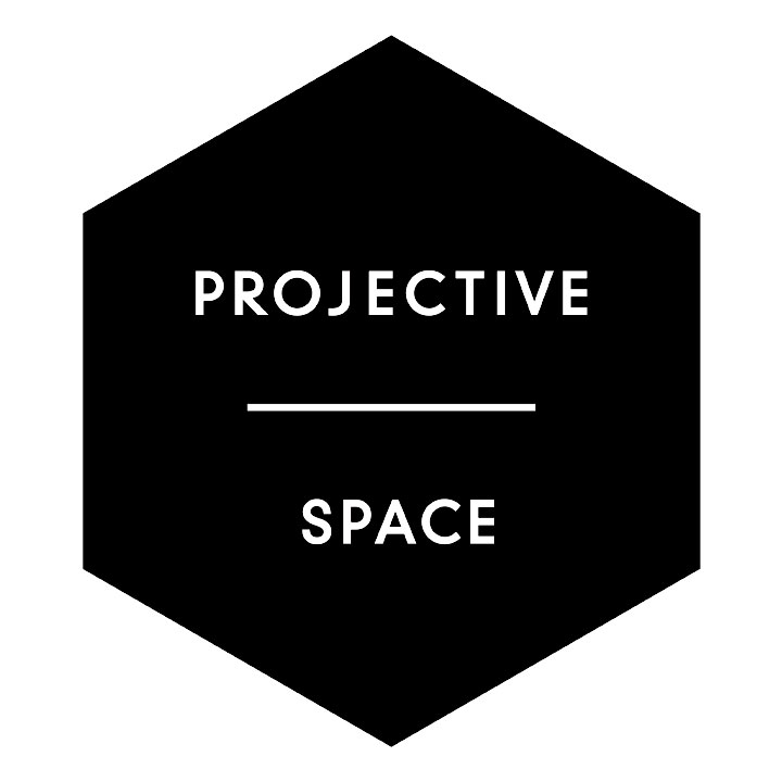 Projective Space L.E.S. logo
