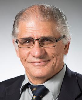 Dr Robin Palmer