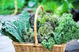 Leafy Greens Basket