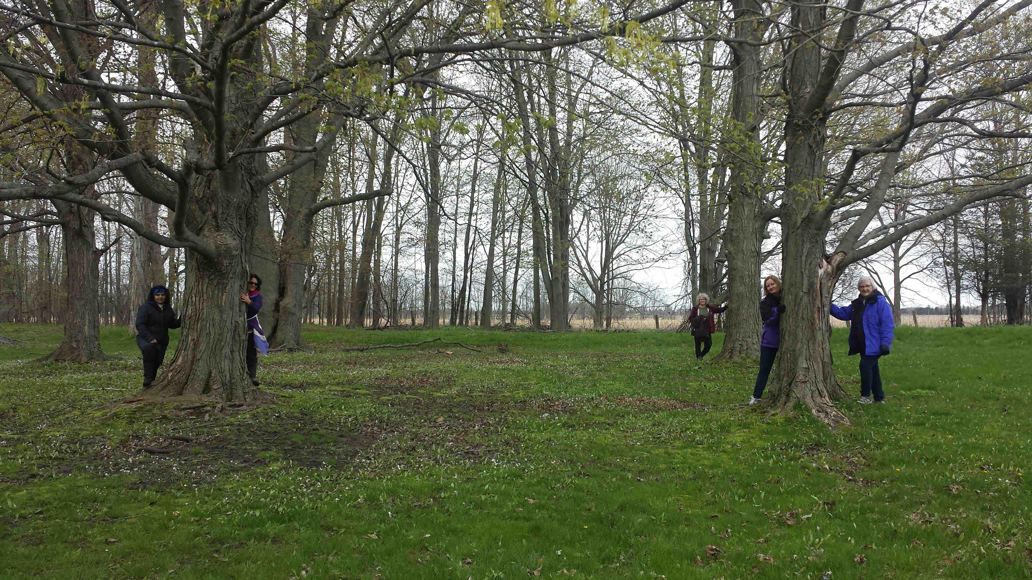 Spring Retreat Group
