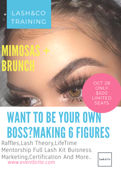 Be A Boss Mink Lash Training Course Get Certified Have A Nice