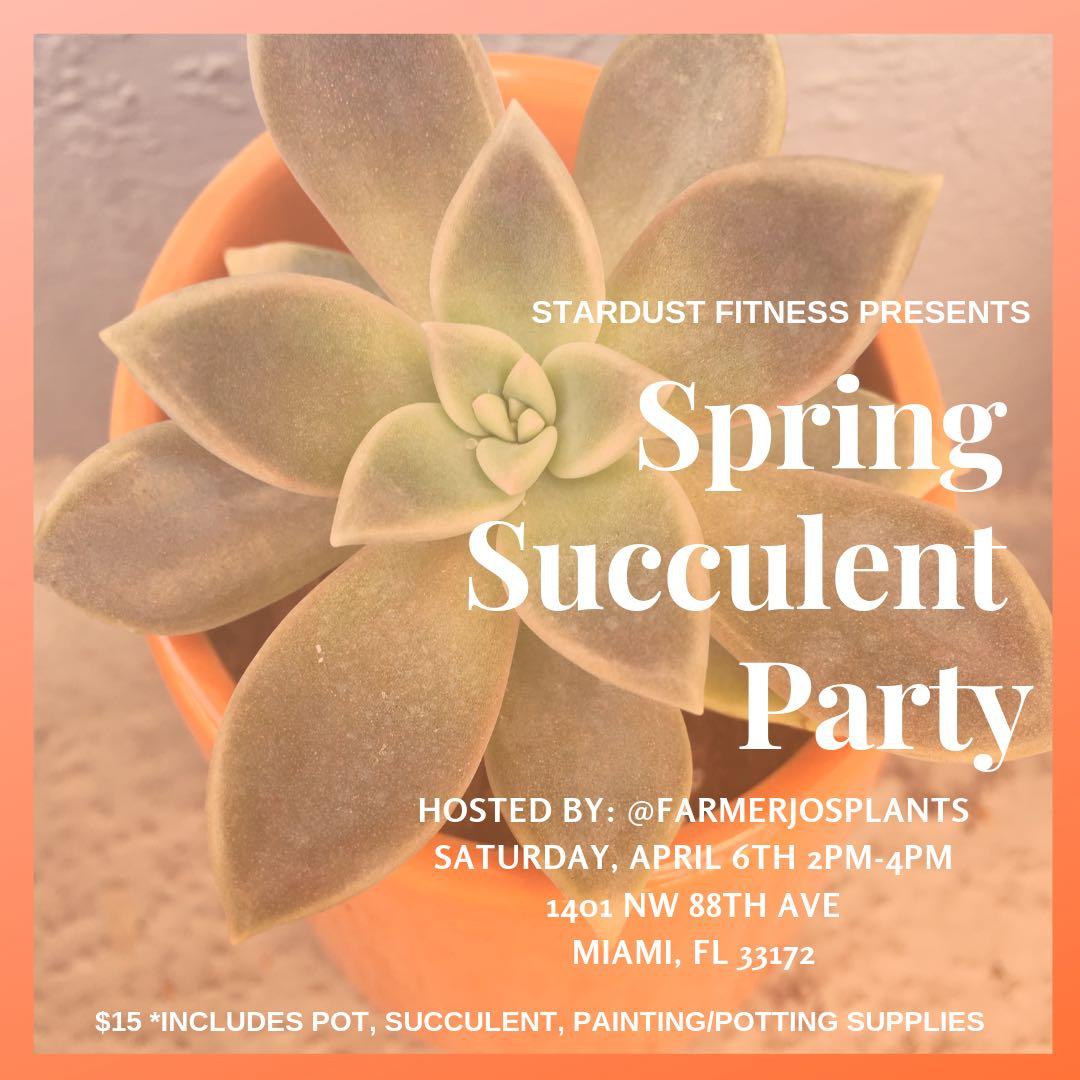 Succulent Party IG