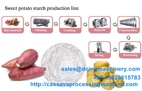 sweet potato processing machine