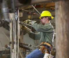 Meeting Minnesota's Workforce Needs: Workforce Assessments