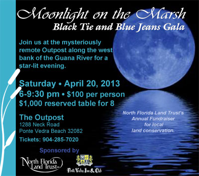 Moonlight on the Marsh 2013 artwork