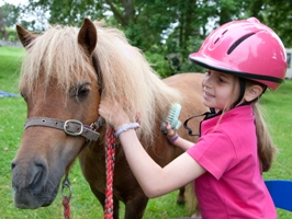 Pony grooming and pony rides at Cheshire Pony Parties