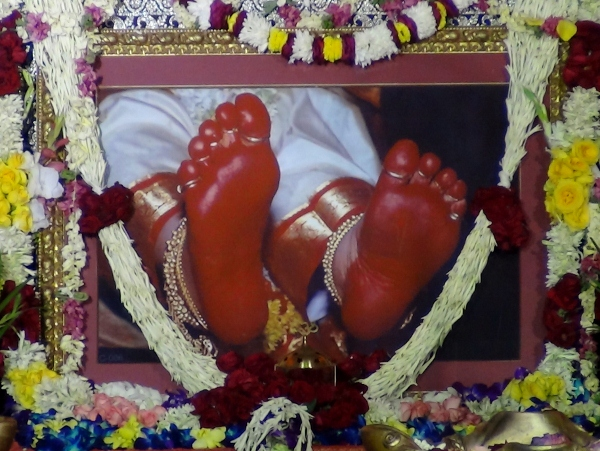 SMND Lotus Feet