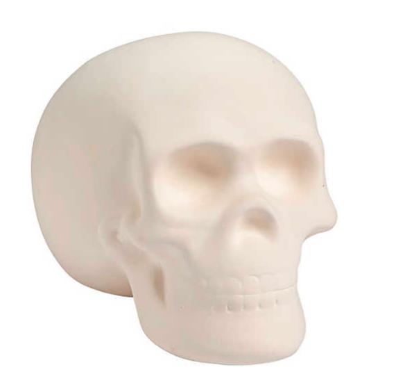 Blank Ceramic Skull