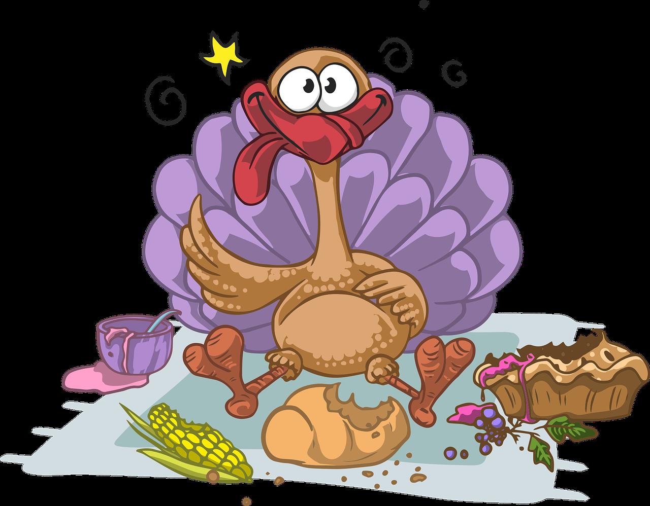 Stuffed Turkey!