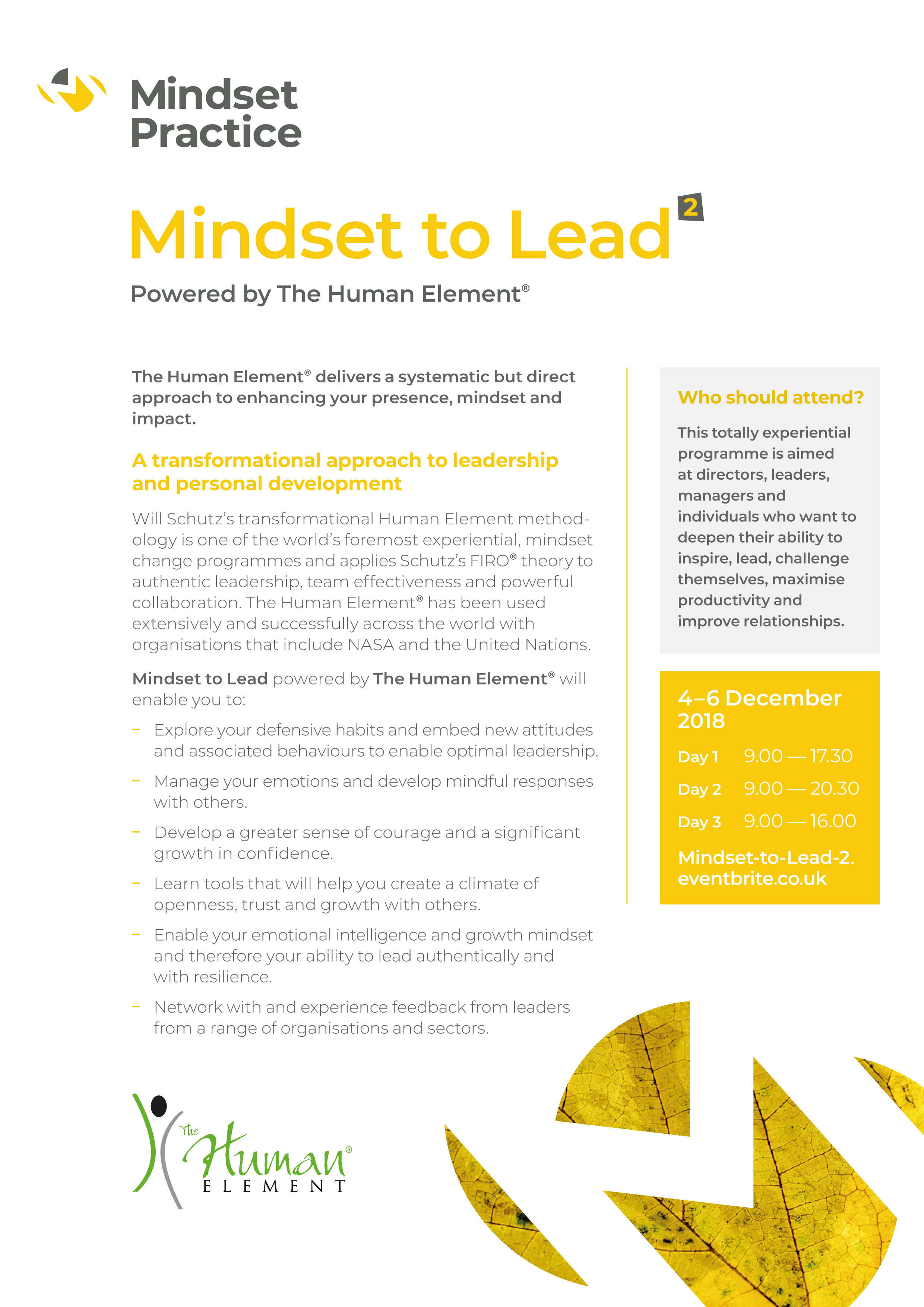 Mindset-to-Lead-2-flyer-page-1