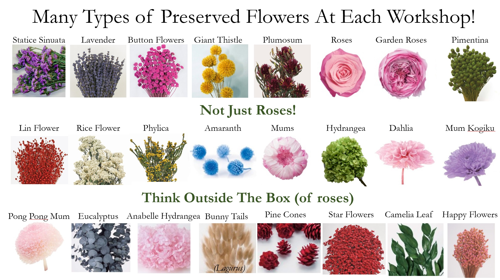 Many types of preserved Flowers