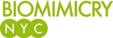 BNYC logo small