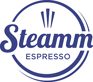 Steamm Logo