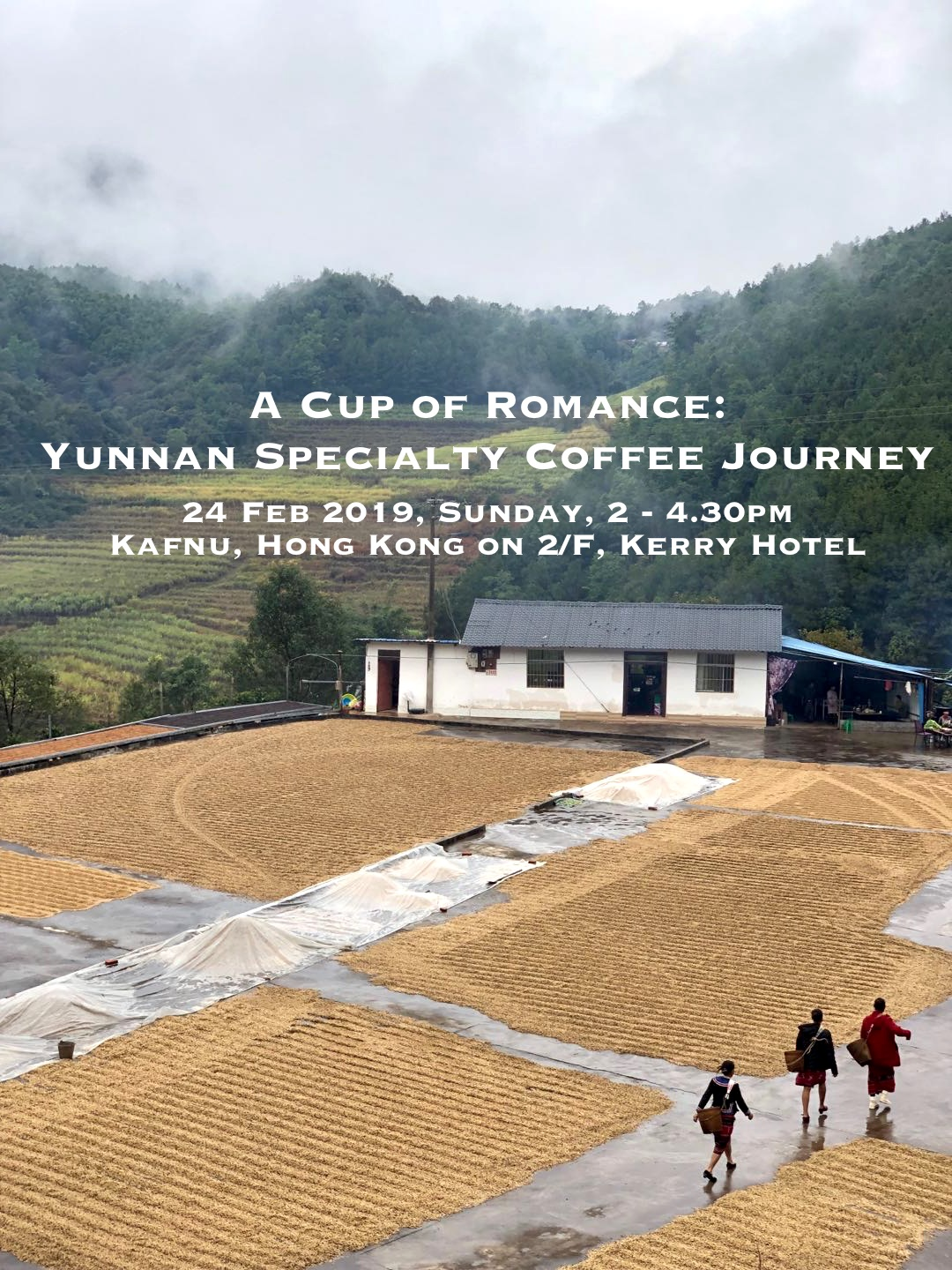Yunnan Coffee Farm