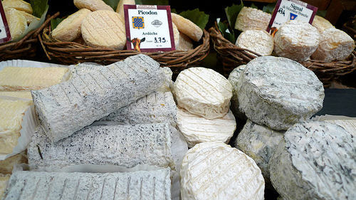 Goat cheeses from every corner of France
