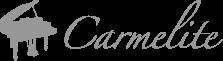 Carmelite Hotel logo
