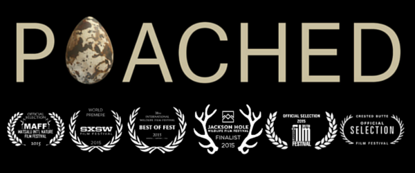 poached movie premiere tickets fri sep 18 2015 at 530