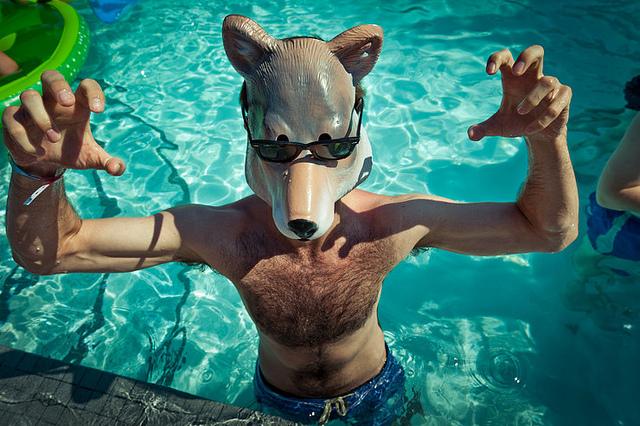 Pool Wolf