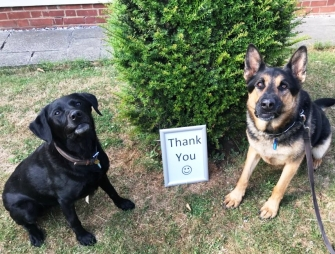Essex Retired Police Dogs