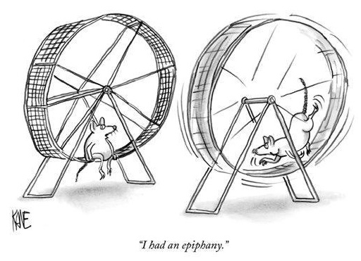 Get Off The Hamster Wheel!