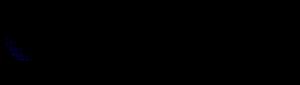 Media Training logo