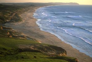 Pt. Reyes National Seashore 50th Anniversary Reception &...
