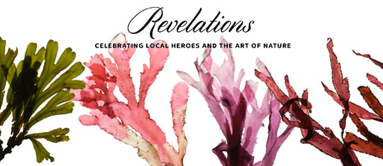 Josie Iselin's seaweed images