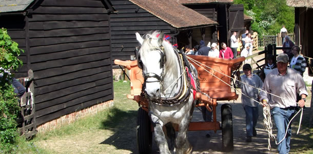 Chiltern Open Air Museum traditional working farm