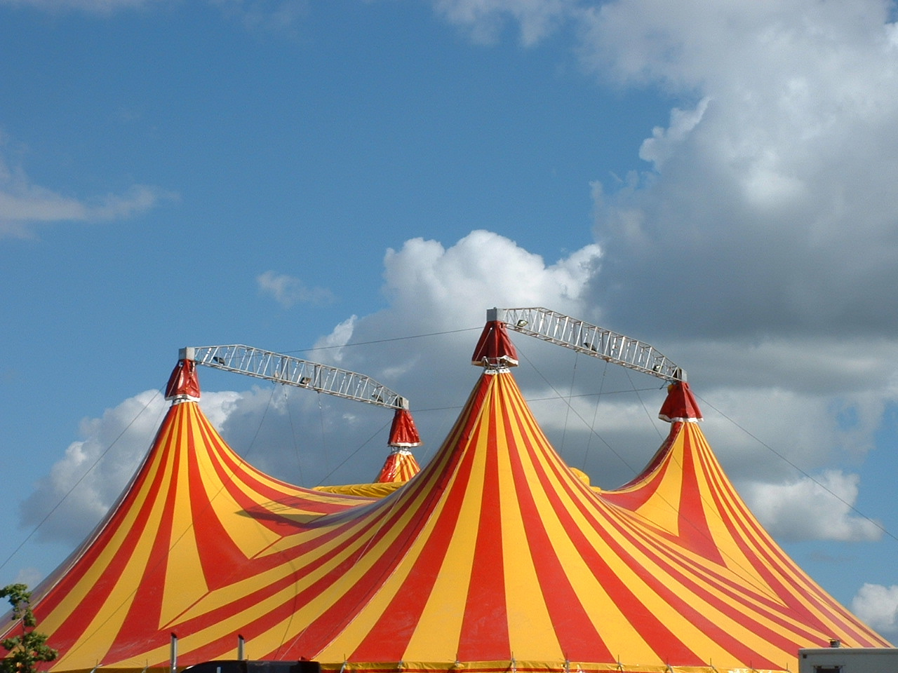 the history and nature of the circus Go under the big top and inside the dark tents of the sideshow to explore the history of the greatest show on earth, from pt barnum's early dime museums to the.