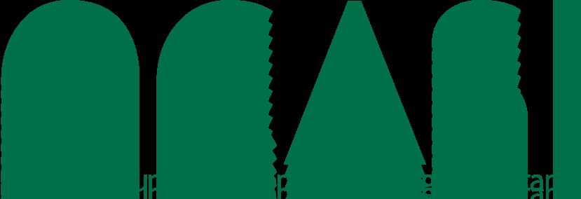 OCASI Logo