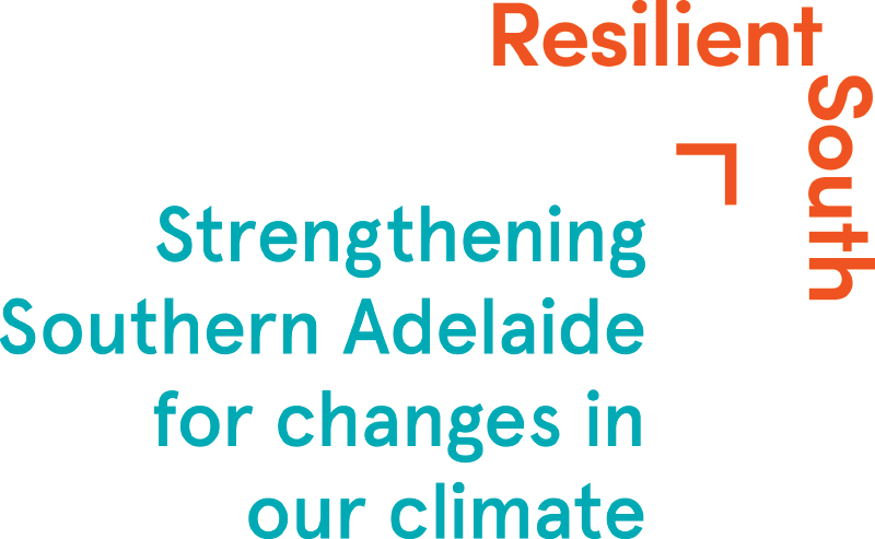 Resilient South logo