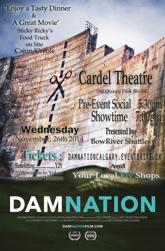 DamNation Poster 1A