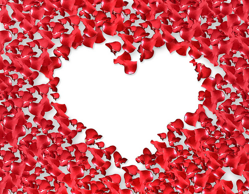 Valentine Rose Petals