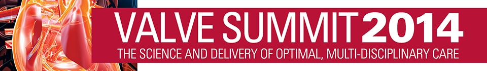 Valve Summit 2014 Logo