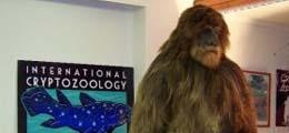 A Day at the Cryptozoology Museum