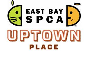 East Bay SPCA Fundraiser via Uptown Place Homes
