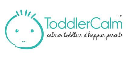 ToddlerCalm Professional Study Day