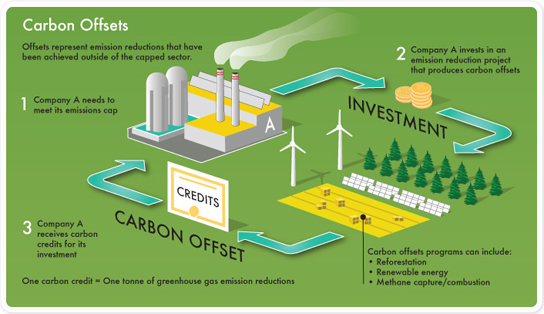 Carbon Offsets Infographic
