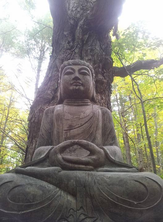 Buddha at the ashram