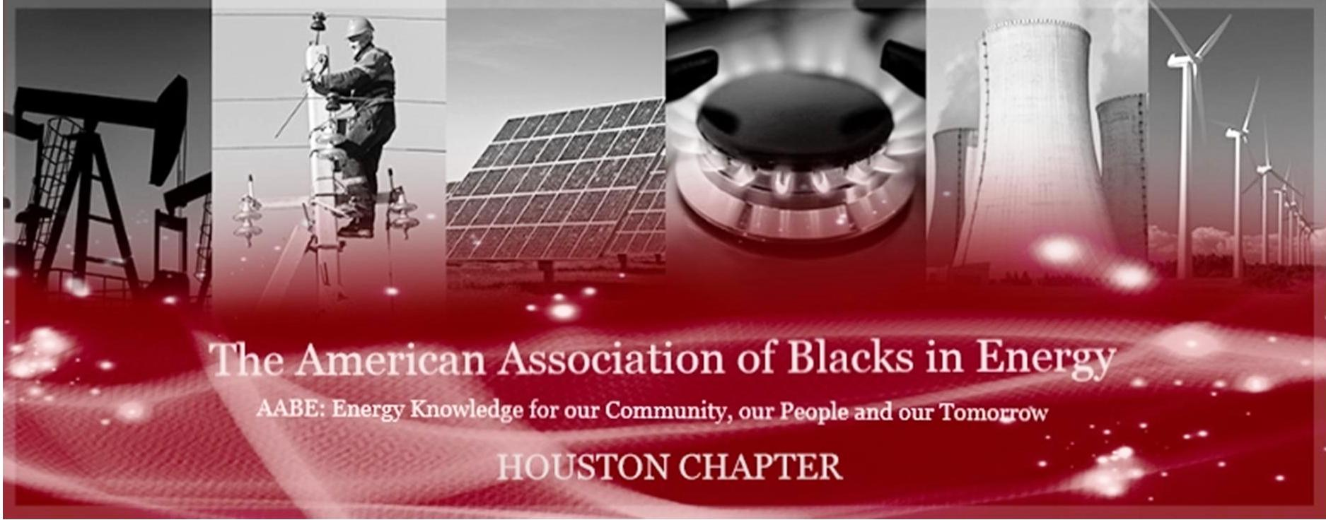 AABE Houston 2014 Campaign Banner