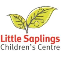 Little Saplings Children's Centre - Multiple Births Stay and...